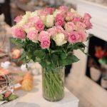 rosa pinke Rosen, weiße Rosen