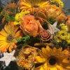 Adventblumen in gold orange
