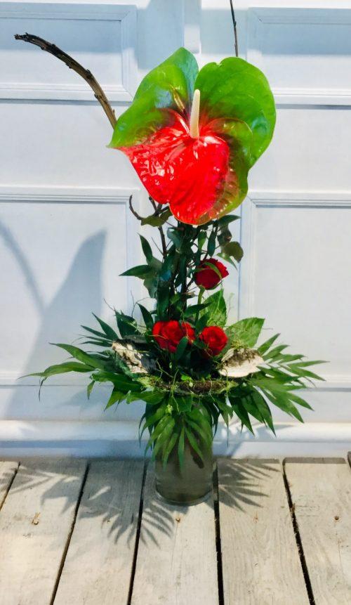 Anthurie Amigo mit roten Rosen